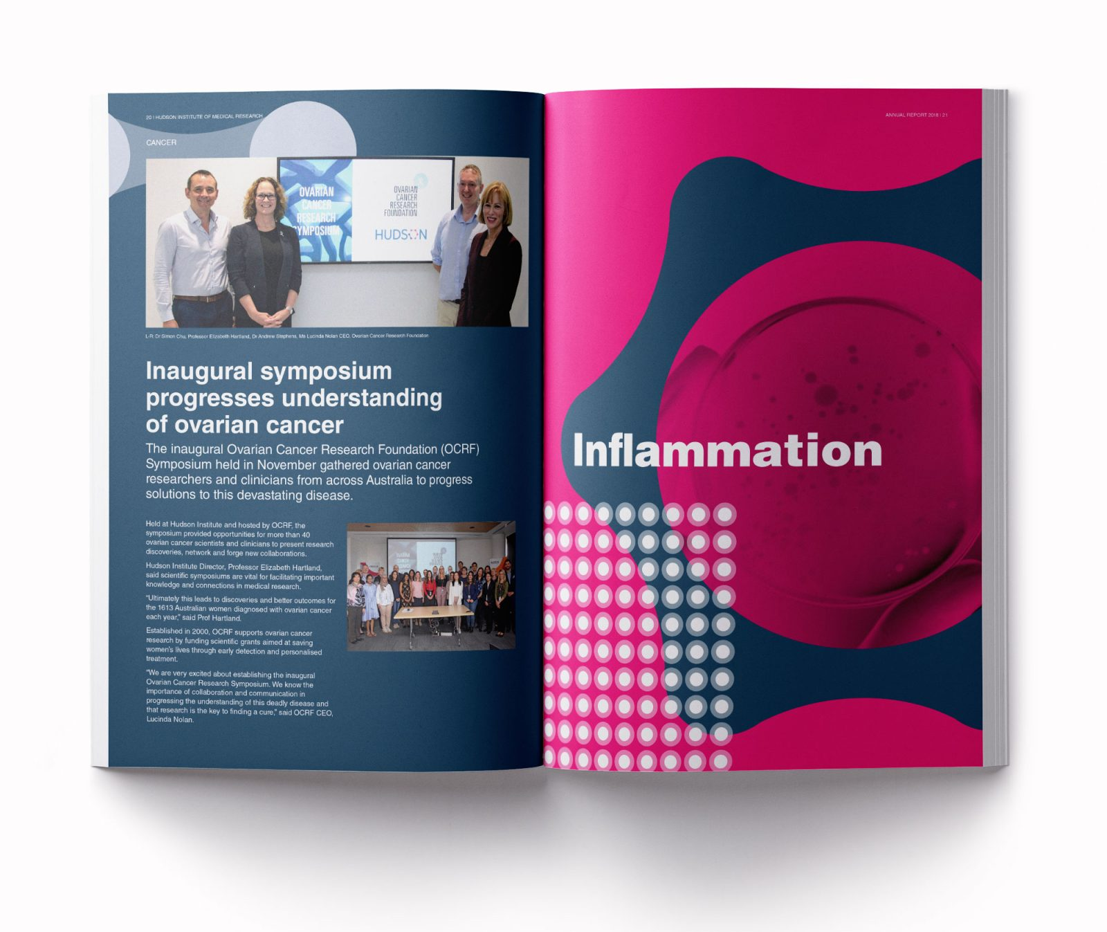 Hudson annual report 2018 Inflammation cover spread
